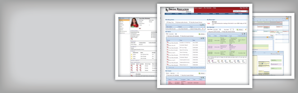 Screenshots of Special Education Case Management software